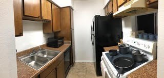 Z Condo Kitchen
